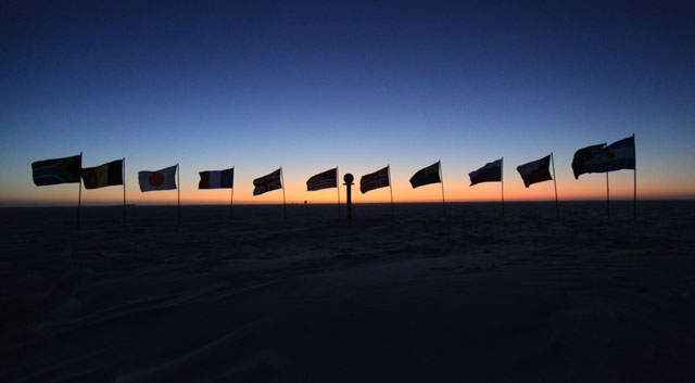 Line of flags at twilight.