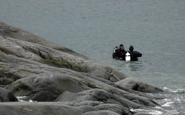 Divers in the water near Palmer Station.