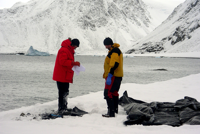 Scientists stand near a black tarp.
