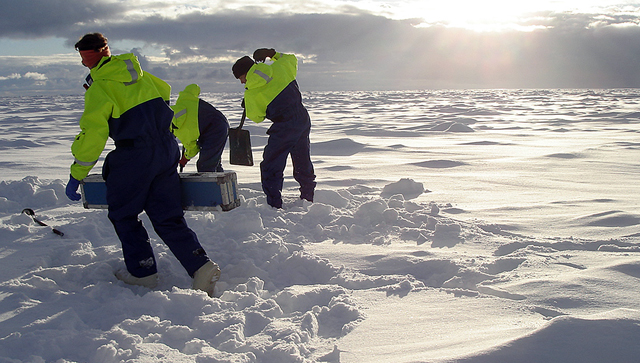 People use shovels to dig in snow.