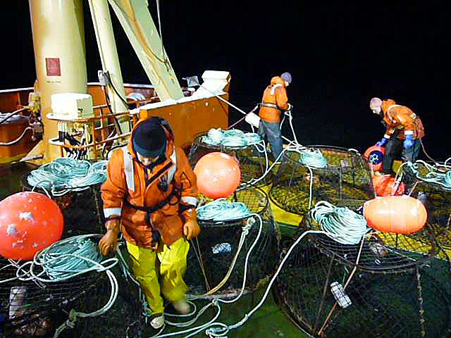 Scientists prepare fish traps on a ship.