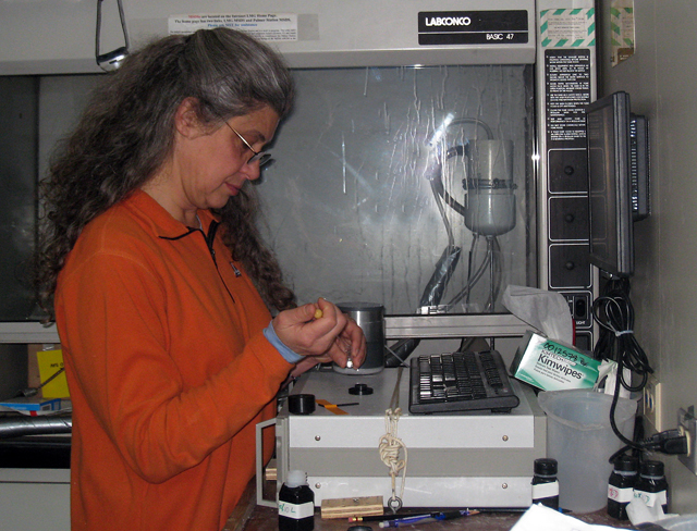 Maria Vernet at work in shipboard lab.