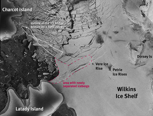 Satellite image of Wilkins Ice Shelf.