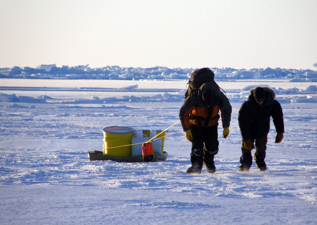 Two people pull sled with gear.