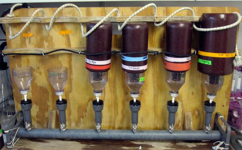 Bottles attached to a wood board with tubes.
