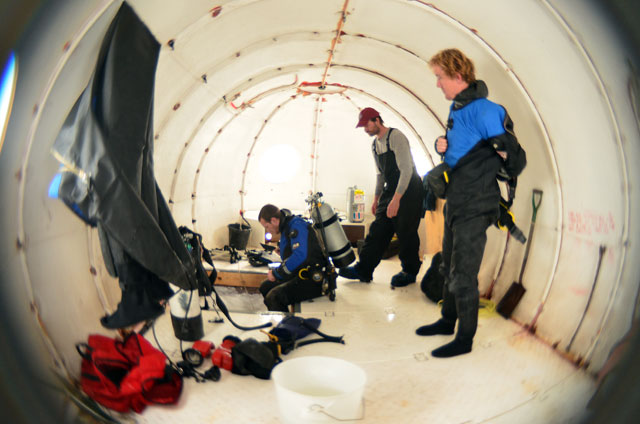 Fish-eye view of divers.
