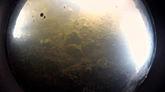 Fish-eye view of lake floor.