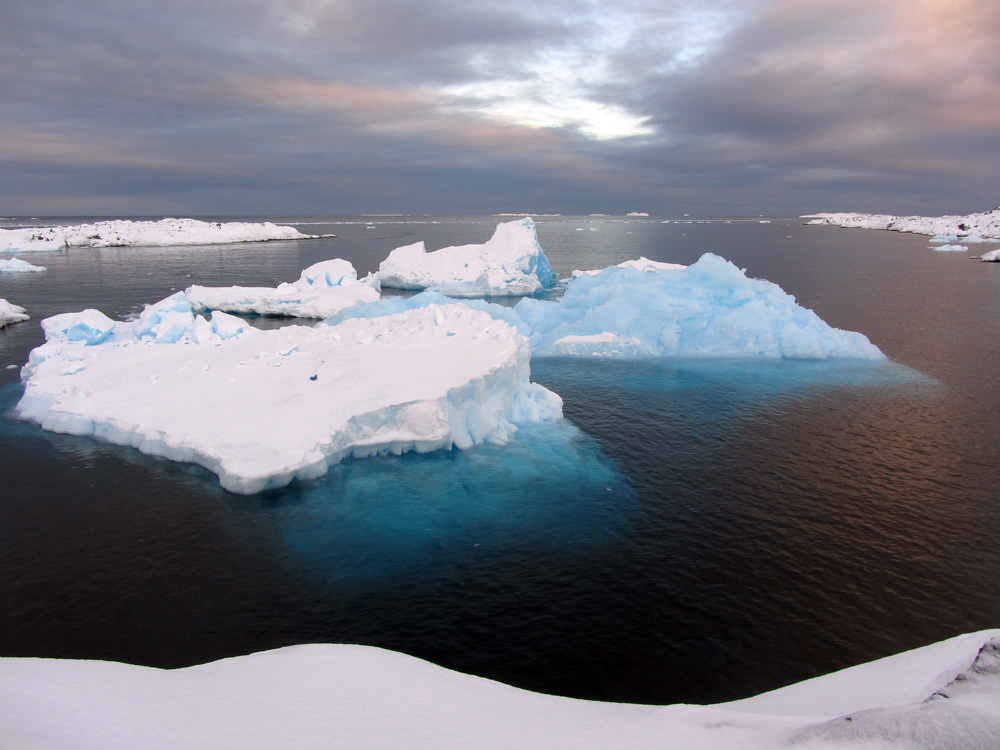 Icebergs drift at sea.