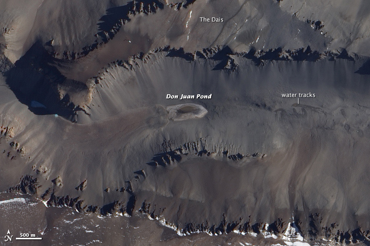 Water tracks in Antarctica's Taylor Valley flow into Don Juan Pond, the saltiest lake on Earth