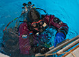 Sarah Seabrook climbs out of the water after diving to collect samples of the methane-eating microbes growing below.